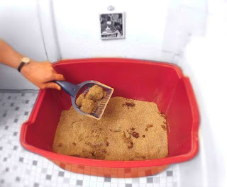 cat litter David Paterson issued an executive order that New York state recognize gay ...