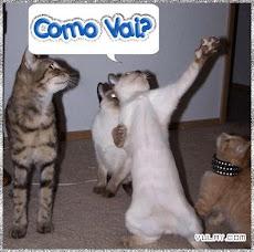 A todos que Visitão bem Blog.