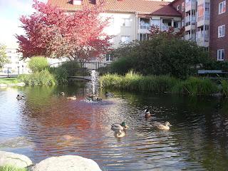 augustenborg single women Bucknell university,news, scores, schedules, stats, live video, live audio, on-demand video.