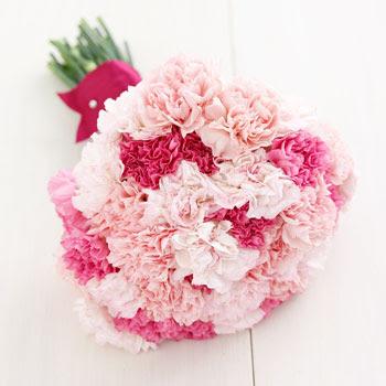 Inspiration Carnations photo 7
