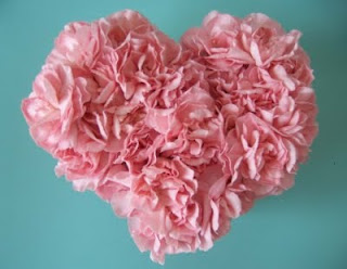 Inspiration Carnations photo 12