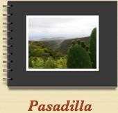 Pasadilla