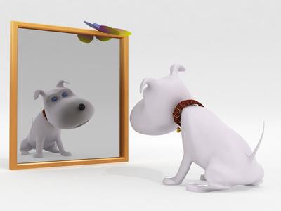 Paraje de historias la casa de los mil espejos - La casa de los espejos retrovisores ...