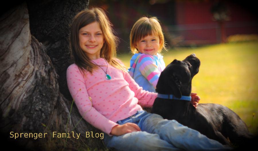 Sprenger Family Blog