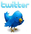 Twitter Servicios Educativos ARQUIMED