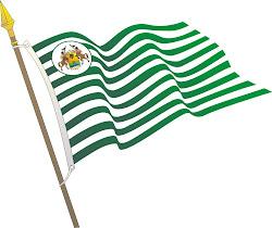 bandera de el meta y su escudo
