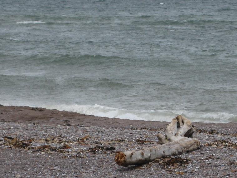 Wilma Duguay   Port Daniel Beach  QC Canada