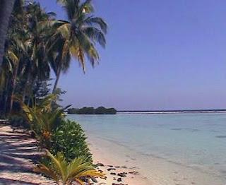 Hutan Pantai Karimunjawa (Wisata Jepara)