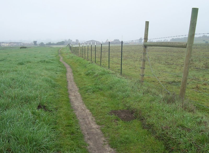 a narrow dirt path running into the horizon, with a grassy field on one side, a barbed wire fence on the other, distant buildings and farmhouses in the background