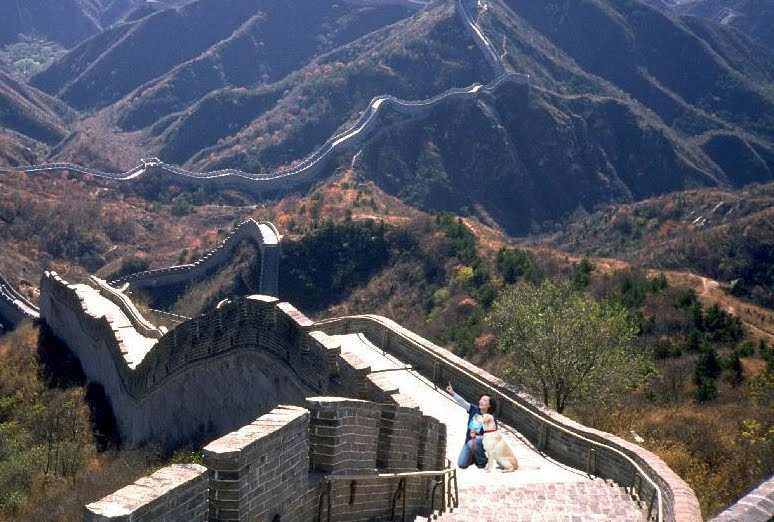 gorgeous aerial view of the great wall of china, I'm kneeling next to Cabana, pointing something out in the air