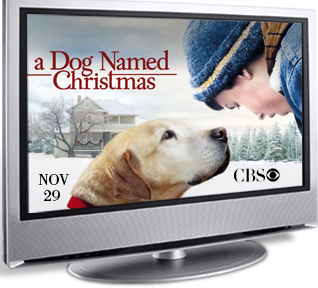 TV screen with photo of a boy and a yellow Lab in the snow, from the movie A Dog Named Christmas, airing on CBS on Nov 29