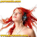 Parnamix