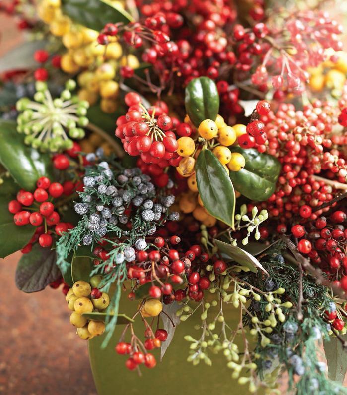 Bacche e rami per le decorazione di natale for Decorazione giardino natale