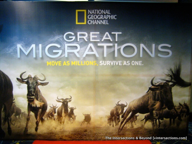 National Geographic Channel Live Free http://www.nbu.bg/cogs/personal/radu/pas/national-geographic-channel-live-curious-lyrics&page=3