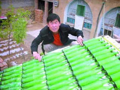Beer Bottle Solar Water Heater