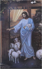 Divino Pastor