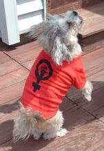 FEMINIST DOG