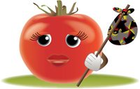 image of a tomato with a hobo bundle