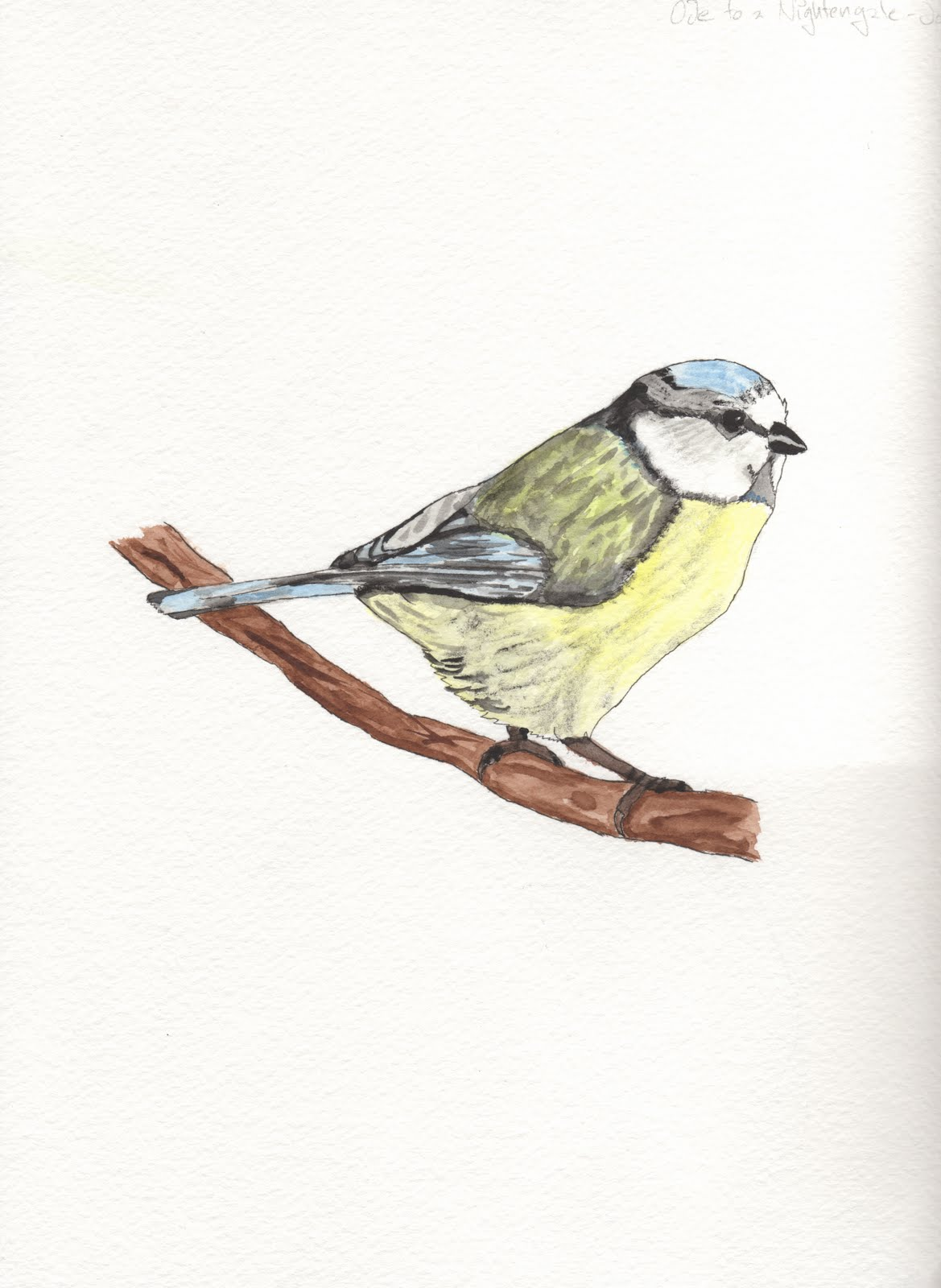 Ode to Nightingale Poem