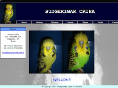 CRUPA - SITE