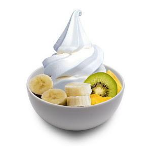 Blueberry Maple Pecan Frozen Yogurt Recipes — Dishmaps