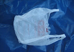 Plastic Bags: Minimizing the Damage