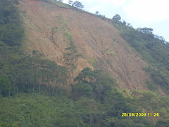 Erosion del Suelo en el área de Influencia directa