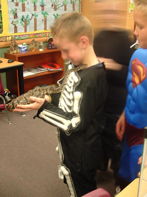 Caleb's Halloween Snake