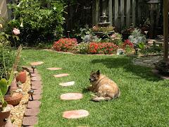 Rosie my garden companion