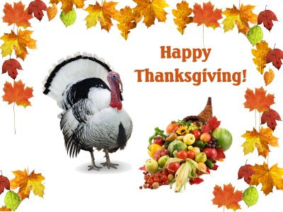 Funny Happy Thanksgiving Day