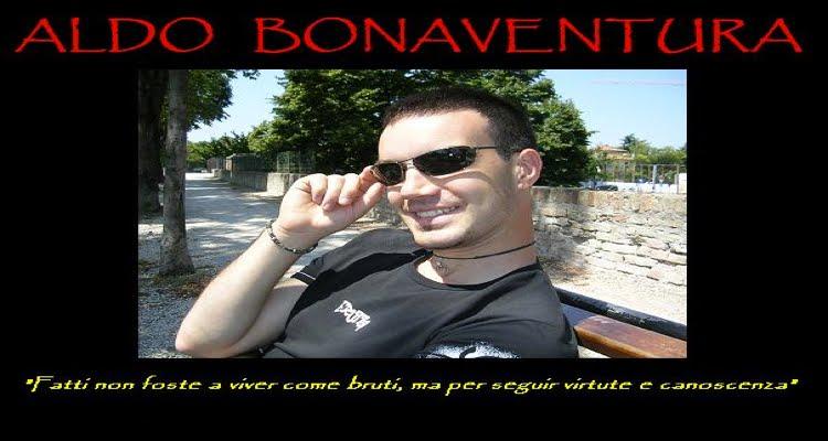 Il blog di Aldo Bonaventura