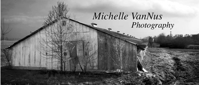Michelle VanNus Photography