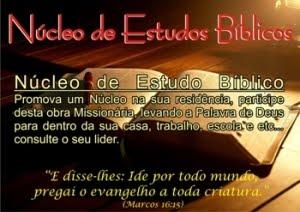 Nucleos de Estudo Biblico