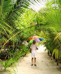 На Малдивите4
