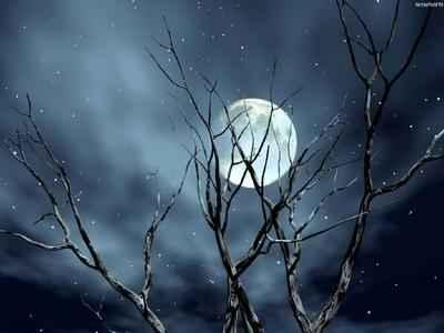 POEMAS SIDERALES ( Sol, Luna, Estrellas, Tierra, Naturaleza, Galaxias...) - Página 24 Luar+e+neve