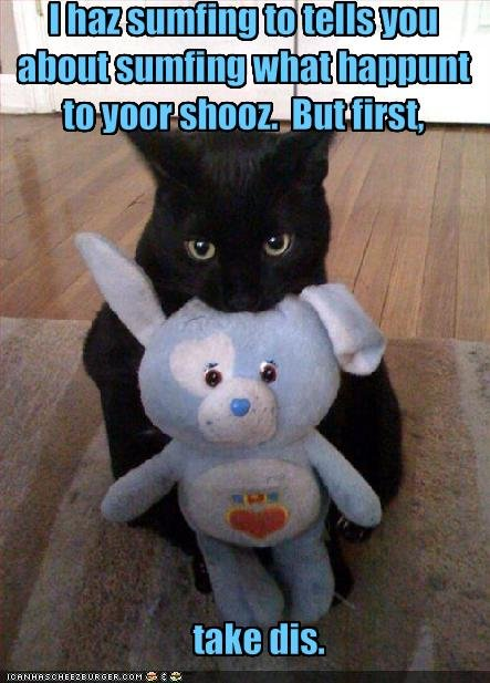 Black Cat Bday Memes
