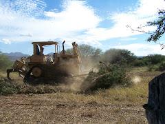 Preparando la tierra
