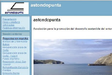 Web Astondopunta