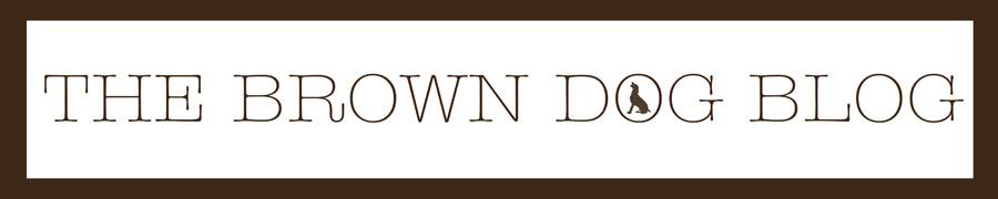 The Brown Dog Blog