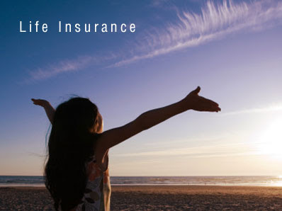 Whole Life Insurance is Very Expensive