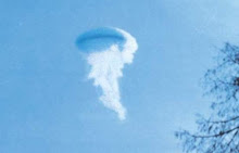 'Jellyfish' witness description of UFO significant?