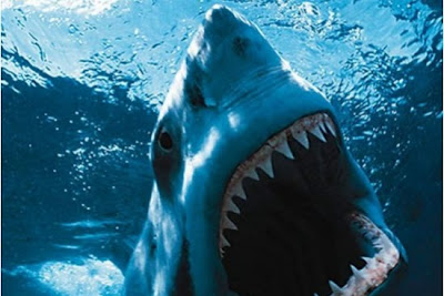 Shark Night 3D O Filme