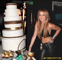 Miley Cyrus birthday party