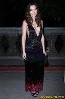 Leighton Meester Sexy black dress