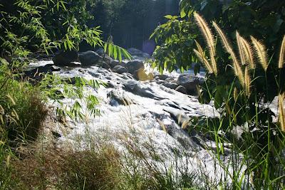Lata Lembik Rapids