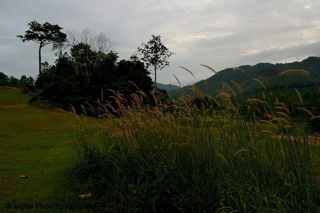 Padang Golf Raub