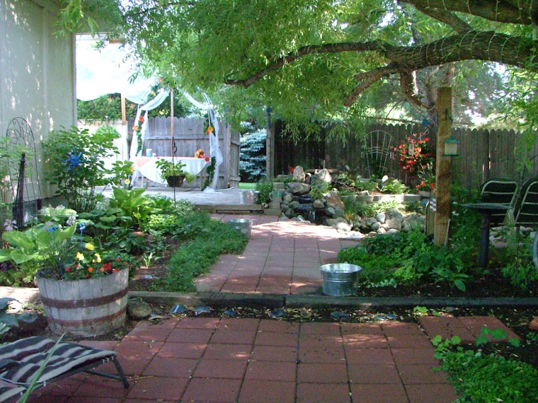 Side Yard - Looking In From Back Yard August 2008