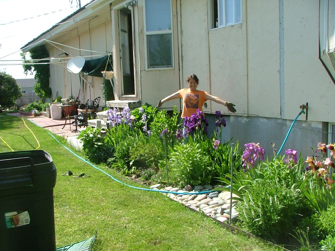 Cutting Garden - Early Summer 2008