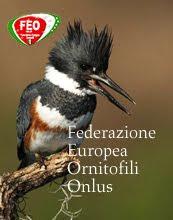 Federazione Europea Ornitofili Onlus