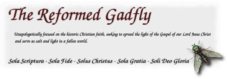 The Reformed Gadfly